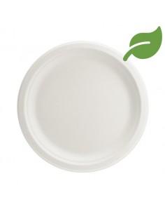 assiette biodegradable blanche