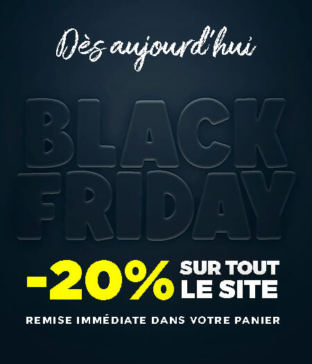 Black Friday 2020 France Effect